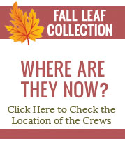 Leaf Collection App
